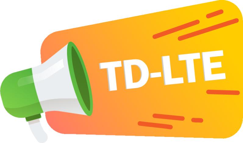 TD LTE